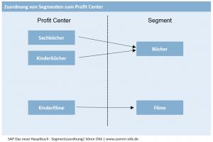 Bsp. von Zuordnungen der Segmente zu Profit Centern